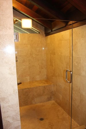 Renaissance St. Croix Carambola Beach Resort & Spa: The Shower
