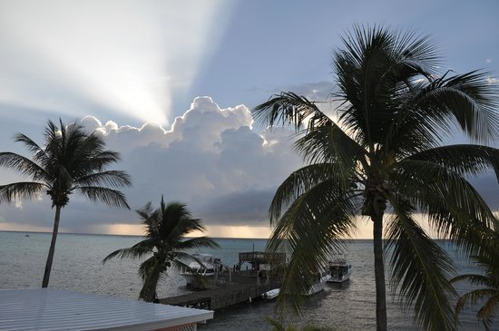 Little Cayman Beach Resort : A morning view from the room