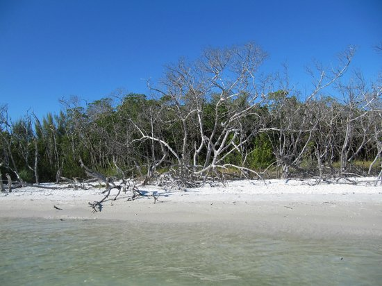 Kayak Marco: A lovely little spot that we stopped at for a break - white, white sand!!!
