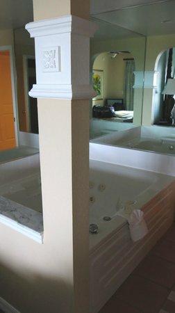 Hilton Grand Vacations at SeaWorld : bath