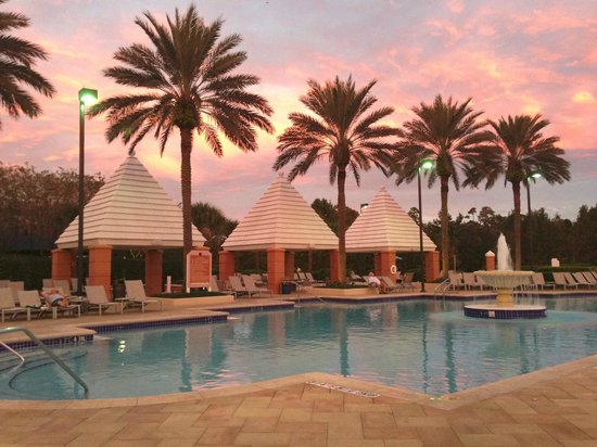 Hilton Grand Vacations at SeaWorld: One of the pools