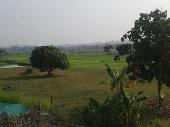 Ban Lom Jen Homestay: Want to see farmers working on their rice paddies?
