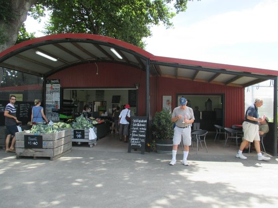 Bay Tours and Charters : Strawberry Patch Farm