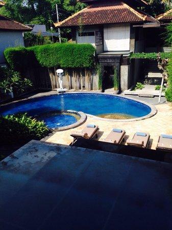 Annora Villas Seminyak: Pool view