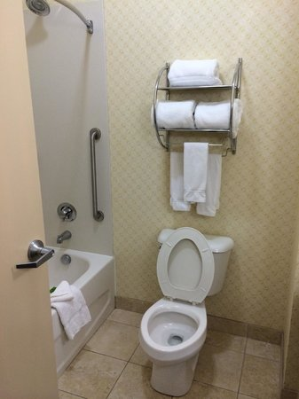 Holiday Inn Express Suites Mason : Bathroom, tub and toilet