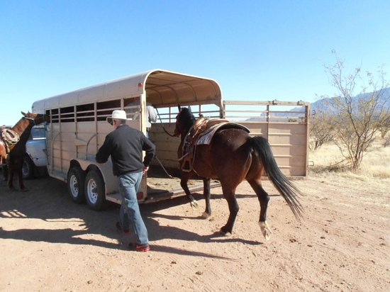 Amado, AZ: Helping to load horsed after the ride.