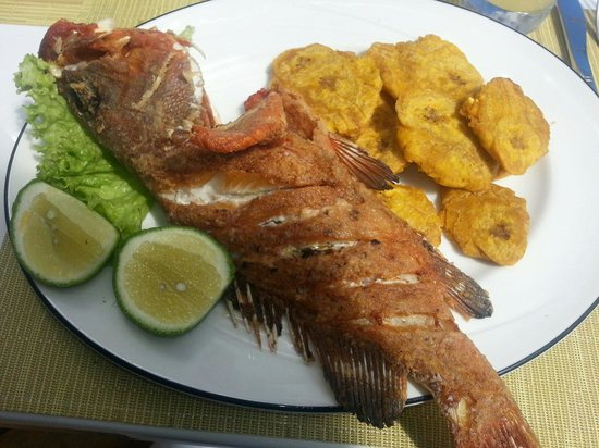 Playa Blanca Restaurant : Fried Grouper with Plantain. Best meal in PC.