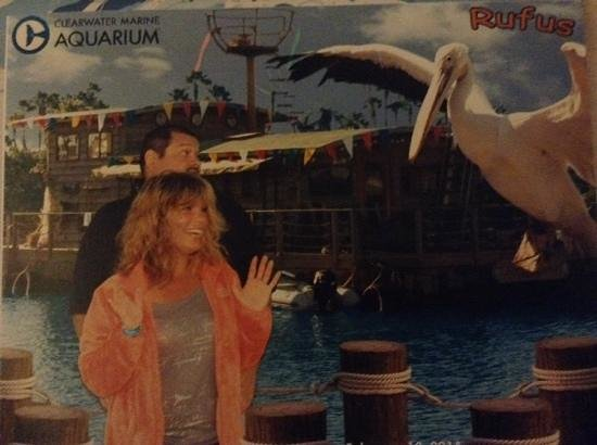 Clearwater Marine Aquarium: this is one of the pictures they take of you, love it