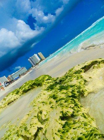 NYX Hotel Cancun: Пляж