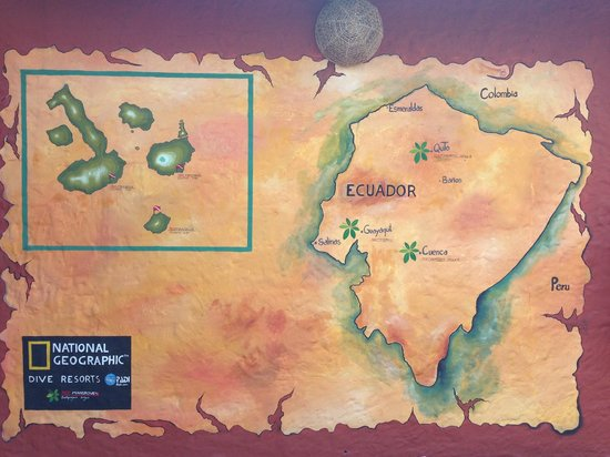 Red Mangrove Galapagos Camping: Стена отеля