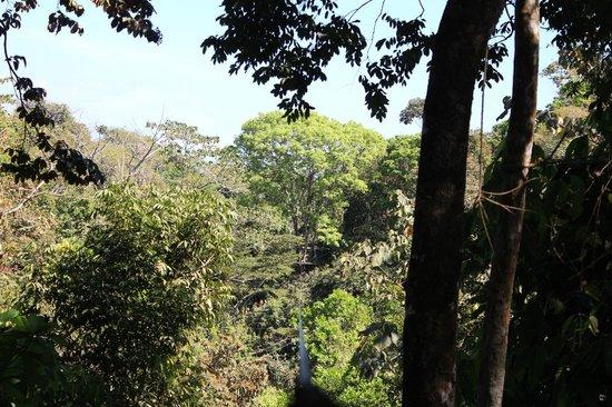 SunTrails Montezuma Waterfall Canopy Tour: landscape