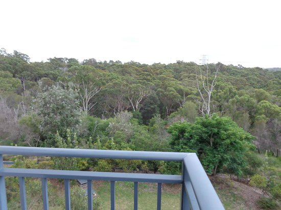 Quest North Ryde: Bushland - view from room balcony