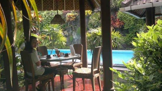 Prambanan Guesthouse: le jardin