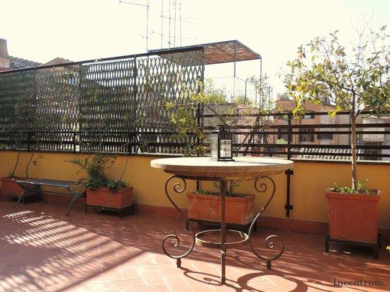 Incentrum: Babuino 172 - Top Terrace