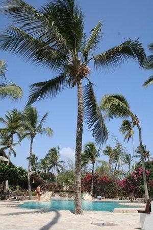 Palumboreef Beach Resort: piscina