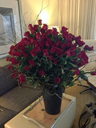 Hilton Miami Airport : THE FLOWERS THEY STOLE FROM OUR ROOM