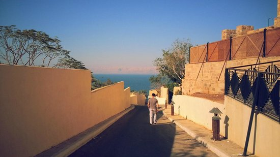 Movenpick Resort & Spa Dead Sea: grounds (club car will take you anywhere)