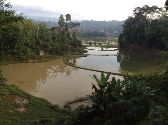 Toraja Heritage Hotel: une vue dont on ne se lasse pas