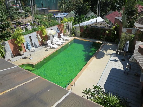 Haleeva Sunshine: piscina