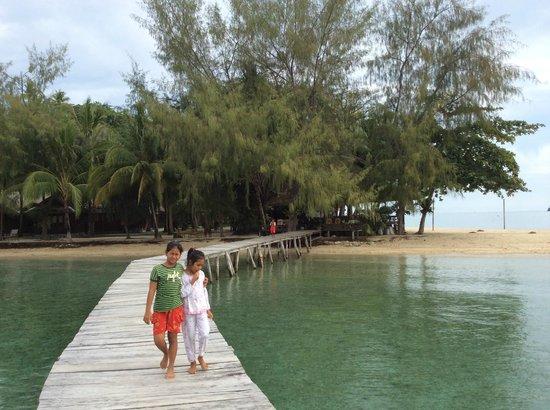 Fadhila Cottages : la jetée, avec vue sur les poissons lion et les étoiles de mer
