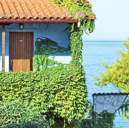 Acrotel Elea Village: Enjoy