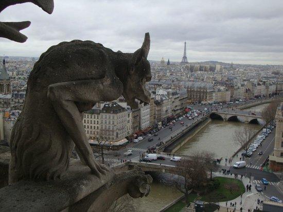 Tours de la Cathedrale Notre-Dame : vista a partir das torres de Notre-Dame
