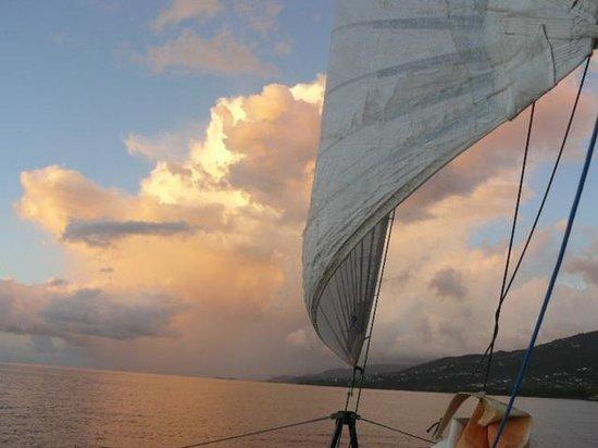 Vieux-Habitants, Guadeloupe : le retour le soir