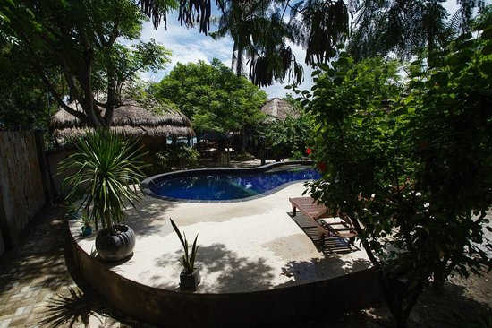 Manta Dive Gili Air Resort : The practice pool