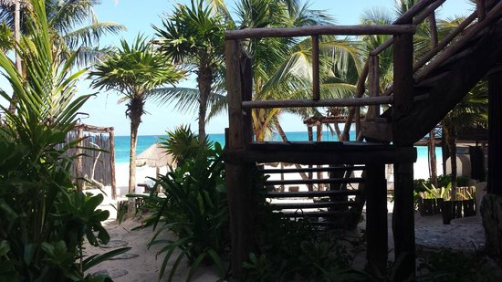 Luv Tulum : Beach area