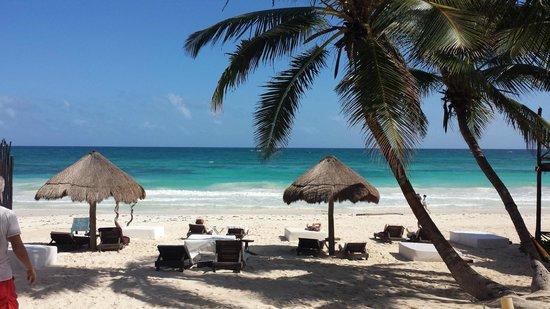 Luv Tulum: Our beach