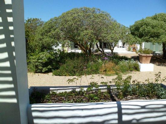 Gelukkie: Garden view