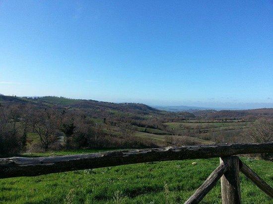 La Meria Az. Agricola: panorama