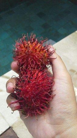 Uppala Villa Seminyak: Tropical fruit compliment