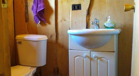 House of Colors Backpackers Hostel: baño de la habitación privada
