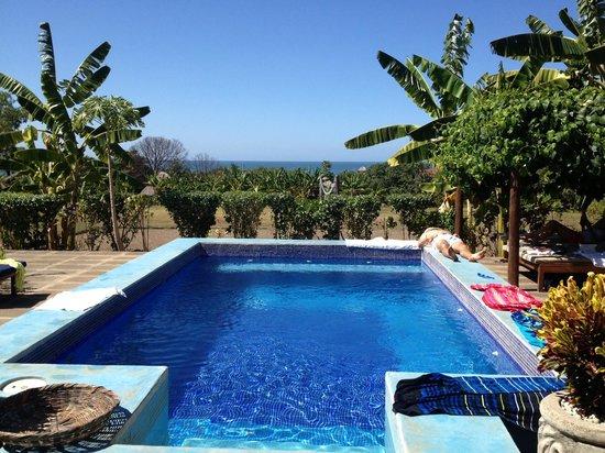 El Coco Loco Resort : Super relaxing pool area everyday...