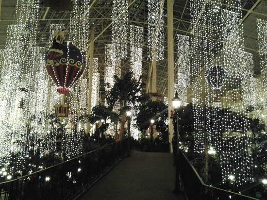 Gaylord Opryland Resort & Convention Center: At night everything is nicely lit inside
