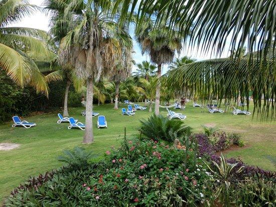 Blau Varadero Hotel Cuba: Hotel site