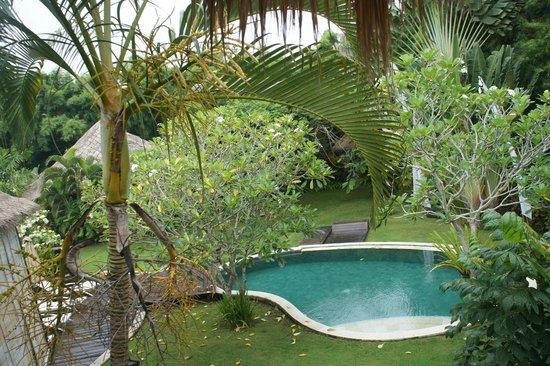 La Villa Mathis : Piscine de la villa des rizières