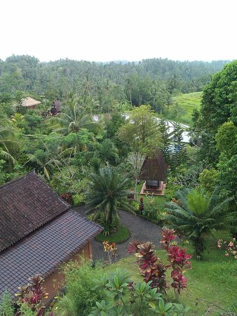 Kebun Villas: view from the top