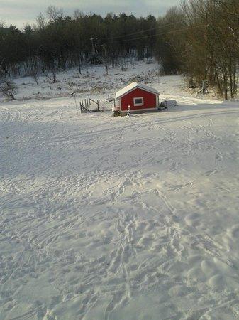 Inn At Buck Hollow Farm: View
