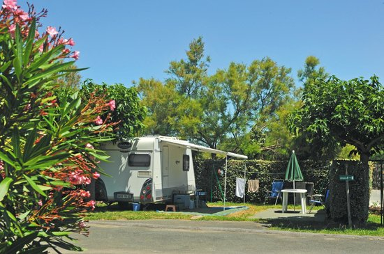 Camping Duna Munguy : Emplacement camping