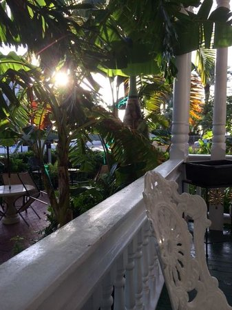 Southernmost Point Guest House: Breakfast view from the porch