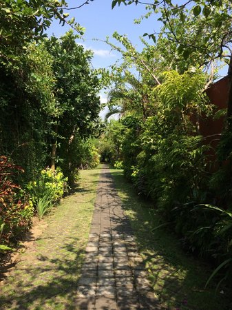 Villa Bali Asri: The small lane leading to Villa 4