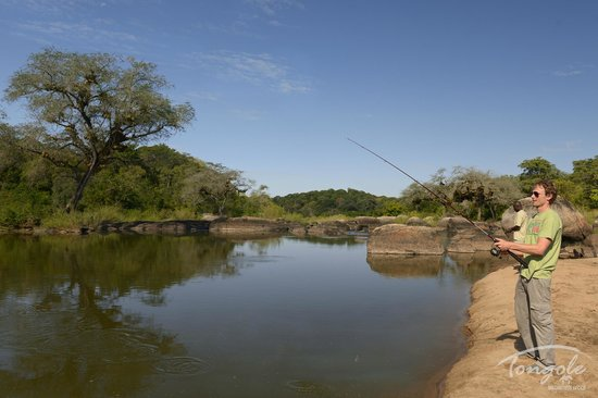 Tongole Wilderness Lodge: Fishing on the Bua River (catch and release)