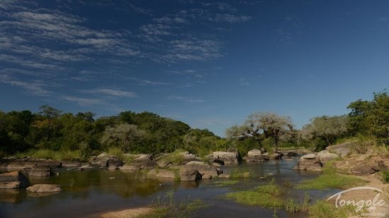 Tongole Wilderness Lodge: Bua River