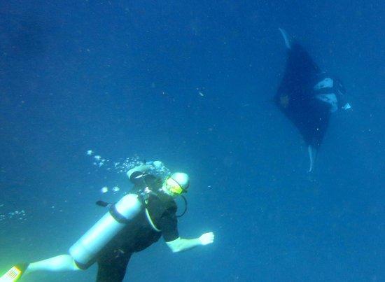 Scandinavian Divers Khao Lak: Me and the Manta