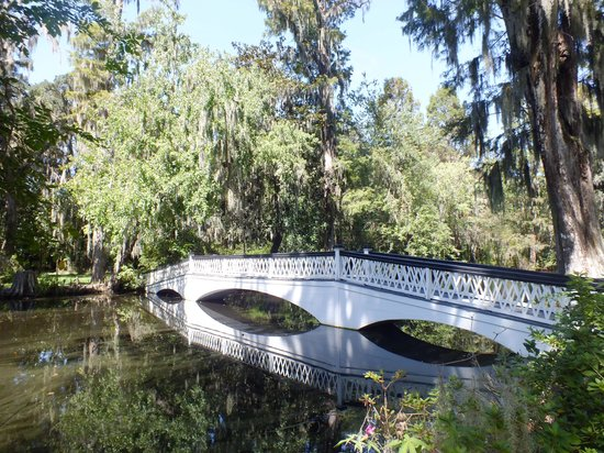 Magnolia Plantation & Gardens: Beautiful place to walk and so peaceful.