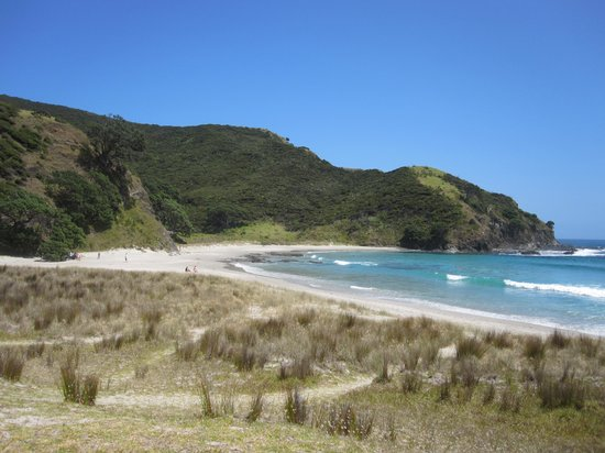 Harrisons Cape Runner: Lunch stop at Tapotupotu Bay