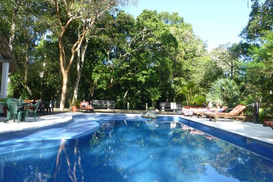 Jungle Lodge: Swimming Pool