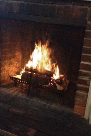 Dr. Dodson House Bed & Breakfast : warm fire during breakfast